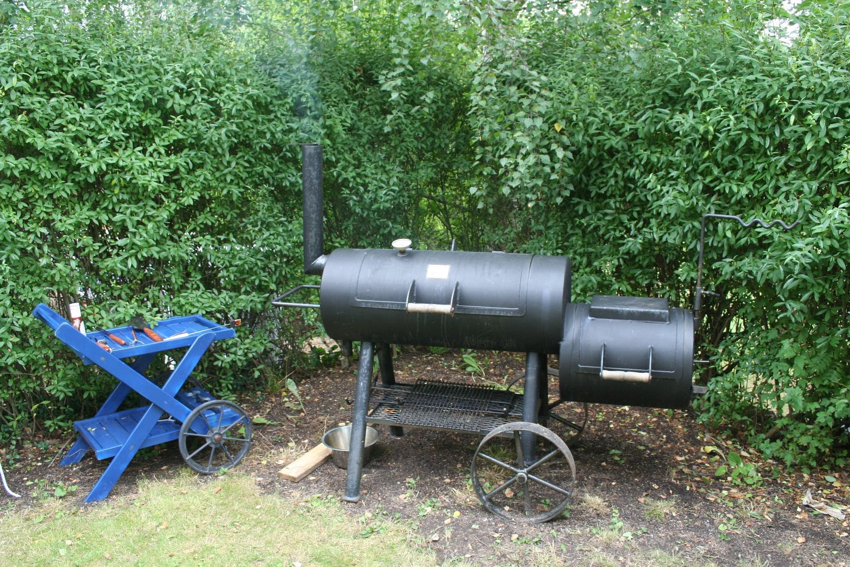 best type of grill, gas vs charcoal