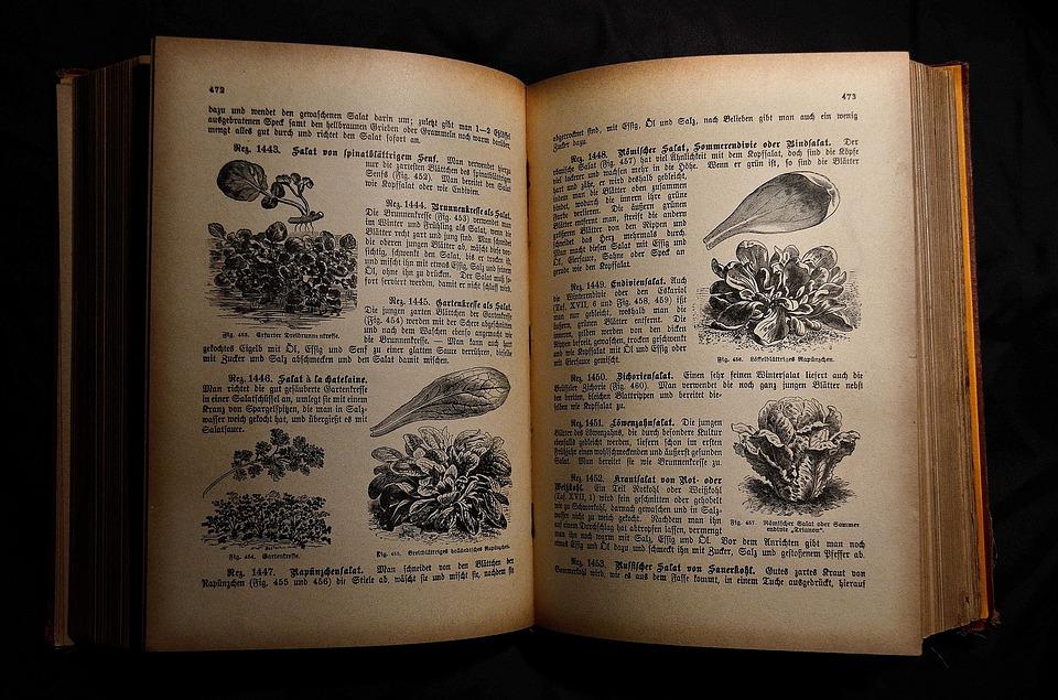 cookbook, cookbook healthy