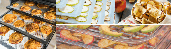 excalibur food dehydrator, the best food dehydrator, review food dehydrator