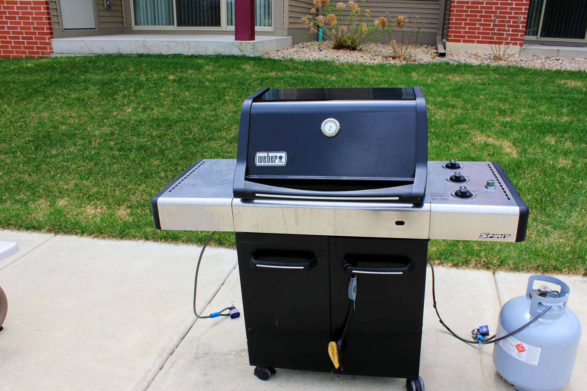 Weber Portable Propane Grill | A Detailed Review