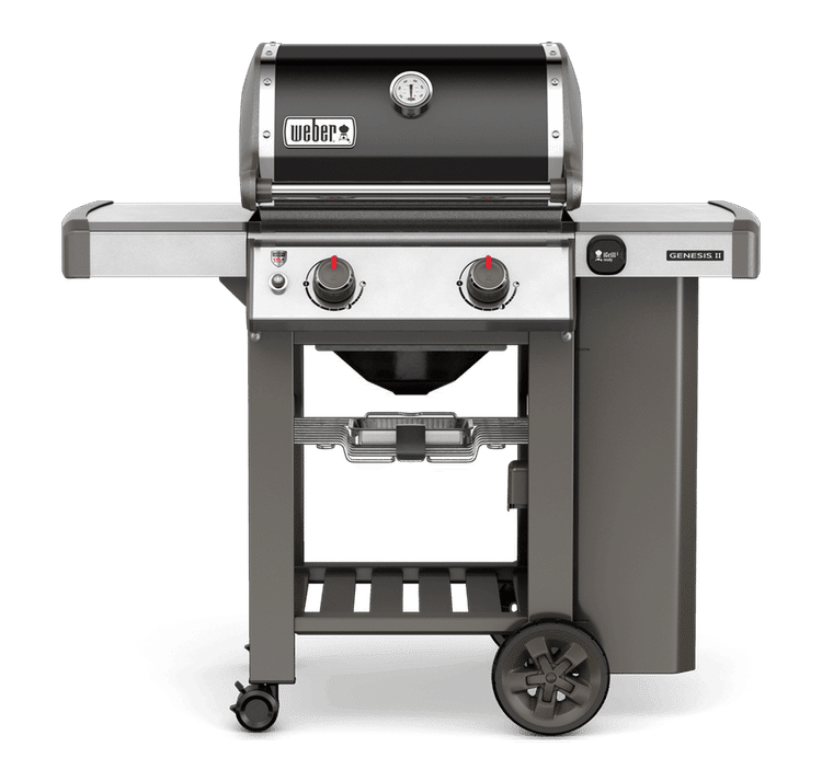 weber portable propane grill a detailed review. Black Bedroom Furniture Sets. Home Design Ideas