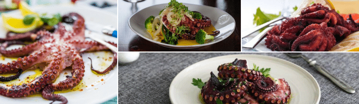 sous vide octopus, cooking octopus, boiled octopus recipe