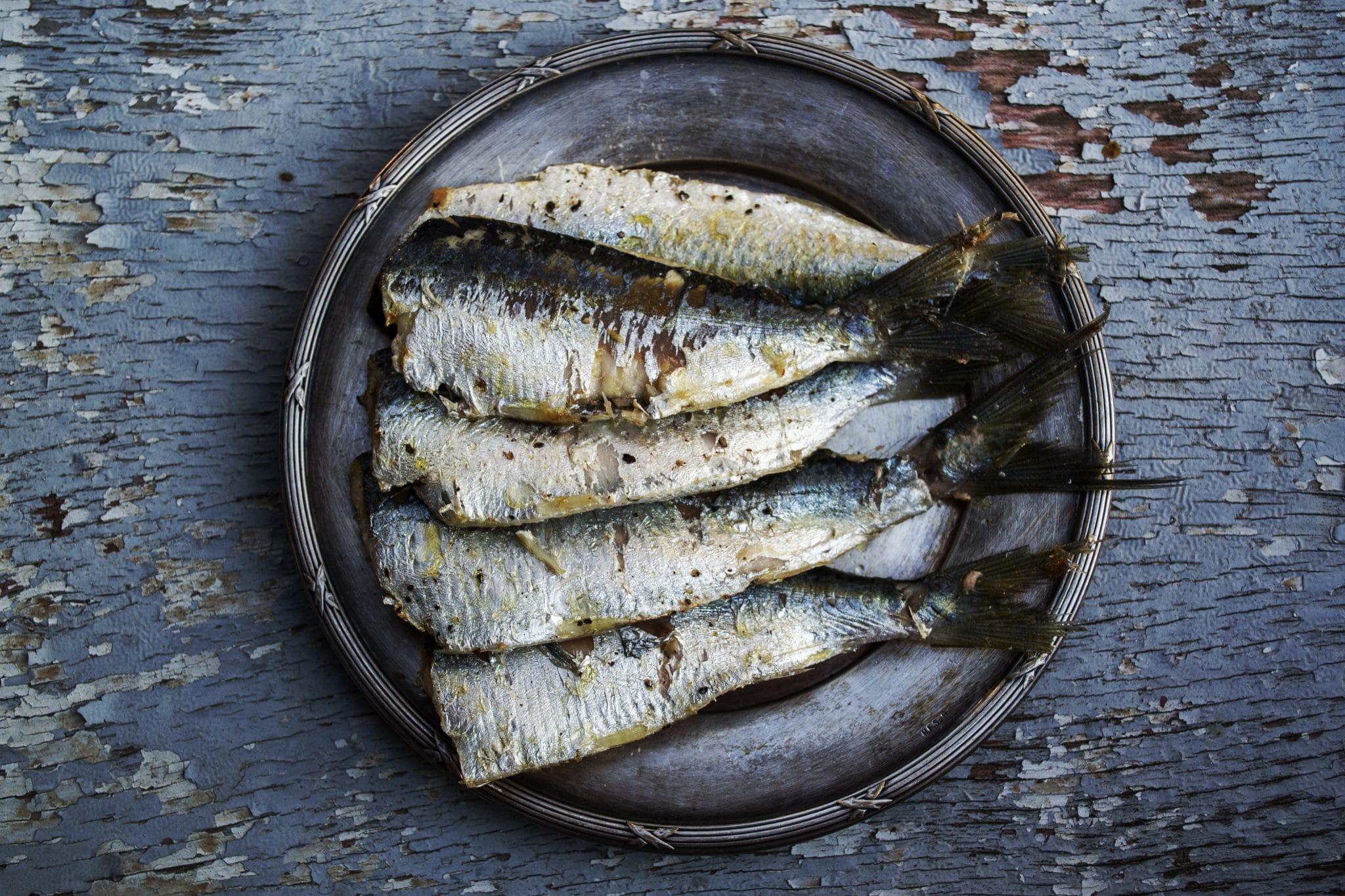 sardines, sardines nutrition