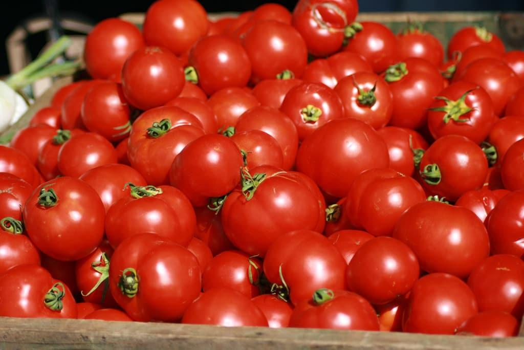 vegetable garden ideas, storing tomatoes