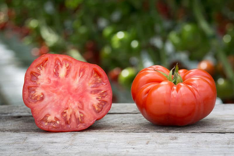 vegetable food, vegetable garden