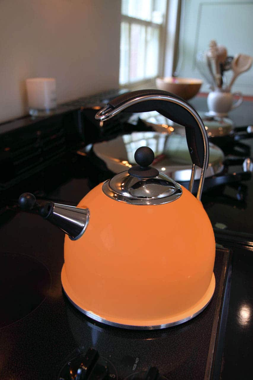 induction compatible kettle, best tea kettle