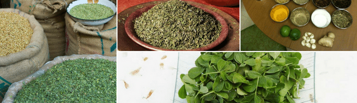 kasoori methi, fenugreek leaves substitute, what is kasuri methi