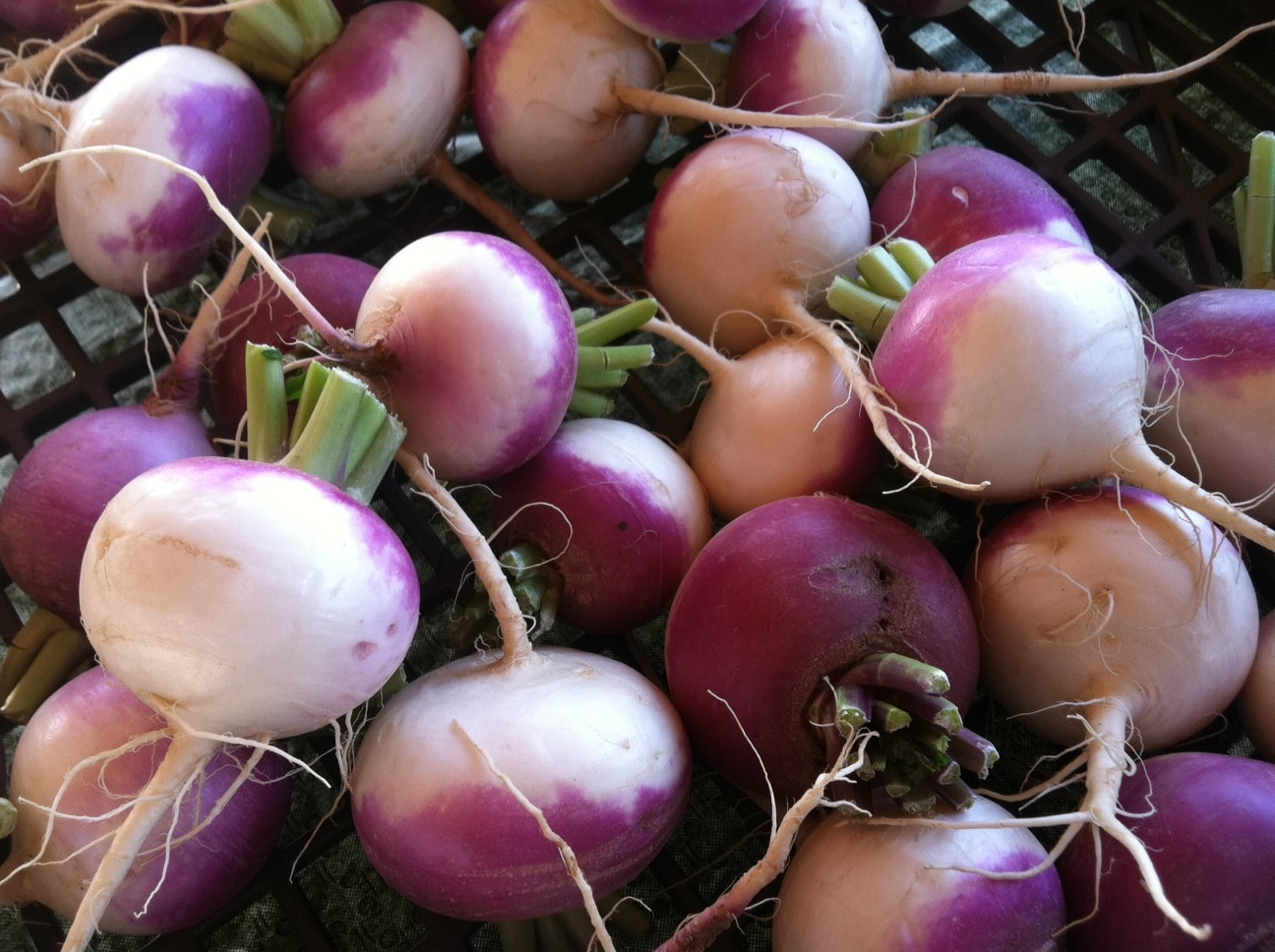 turnip recipe, how to cook turnip