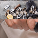 Best Oyster Knife: Top Product Reviews