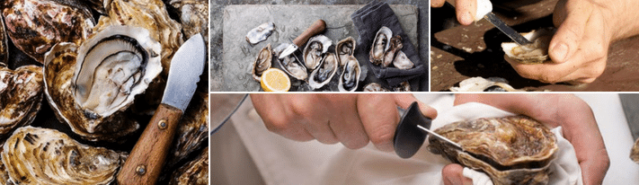 best oyster knife, oyster shucking tool, how to shuck an oyster