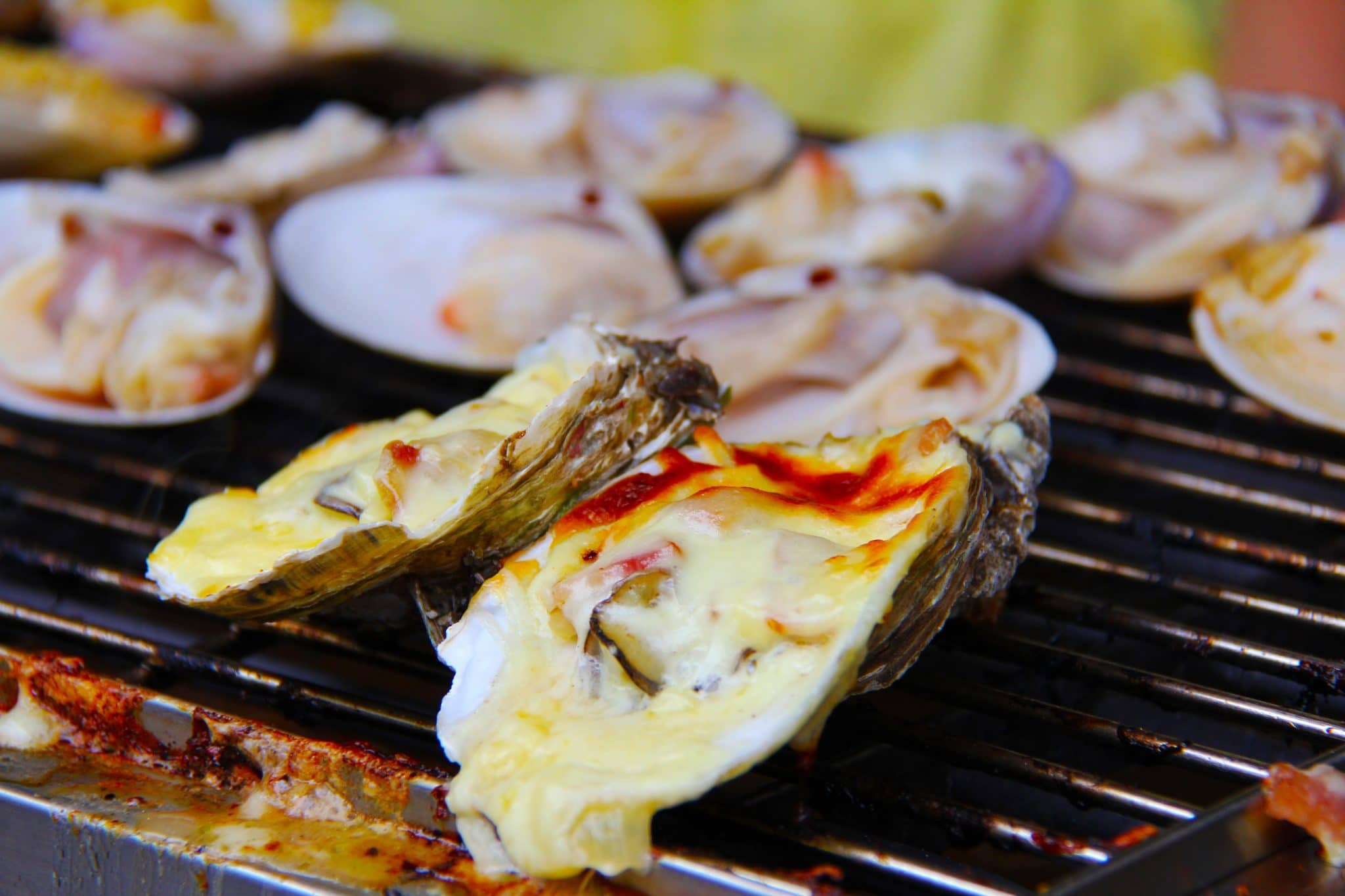 Smoked Oysters A Delicious Treat On The Gas The Art Science