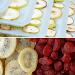 Excalibur Food Dehydrator Review – All You Need to Know
