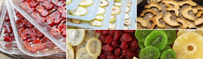 excalibur food dehydrator reviews, excalibur dehydrator, fruit dehydrator reviews