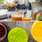 Omega Juicer Reviews - Our Picks