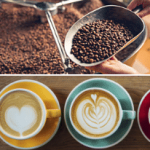 Best Coffee Bean Brands - Reviewing Top 17