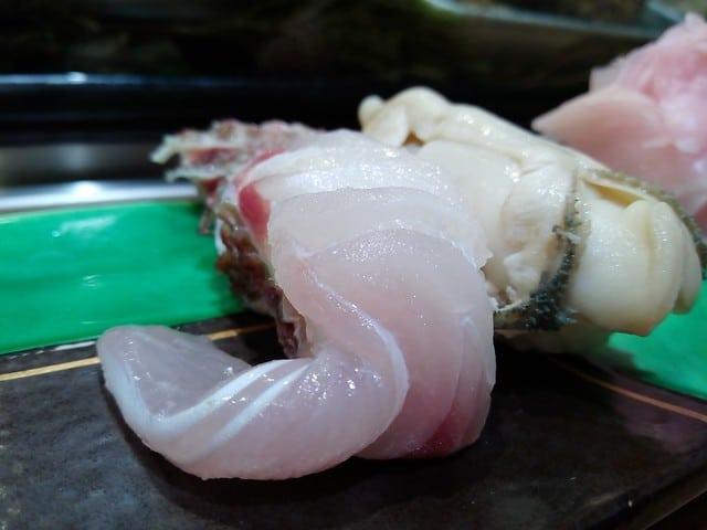 sea snail, edible sea snail