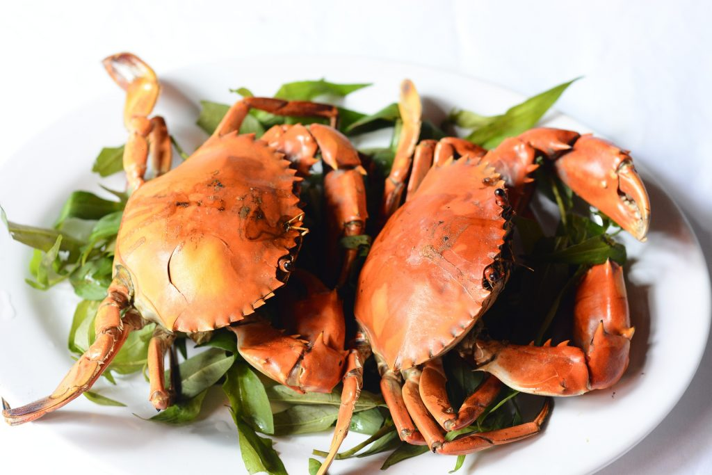 lobster crawfish, lobster crayfish