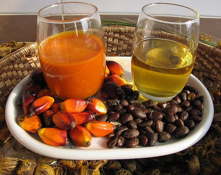palm oil, what is the palm oil