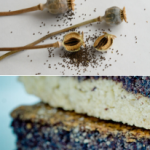 What Is A Good Substitute For Poppy Seeds? - 5 Ideas