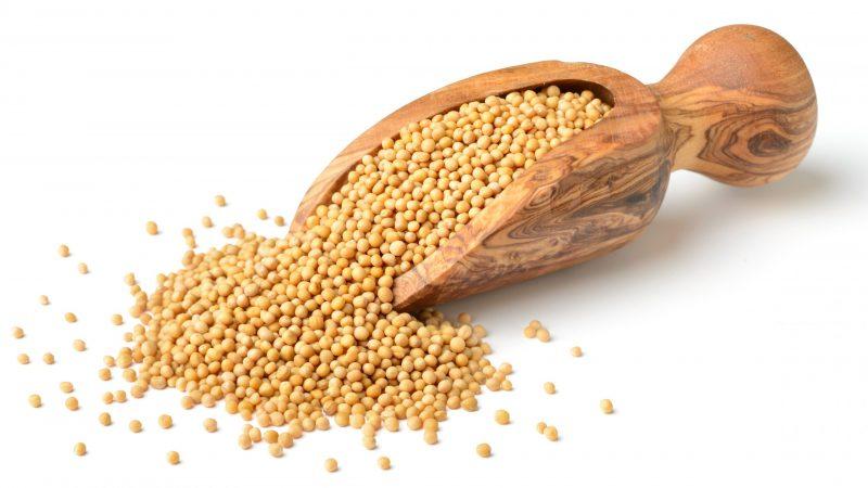 mustard seeds substitute