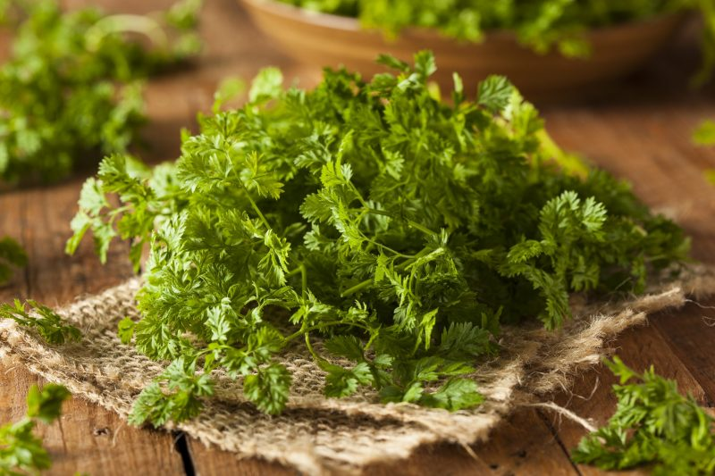 substitutes for chervil