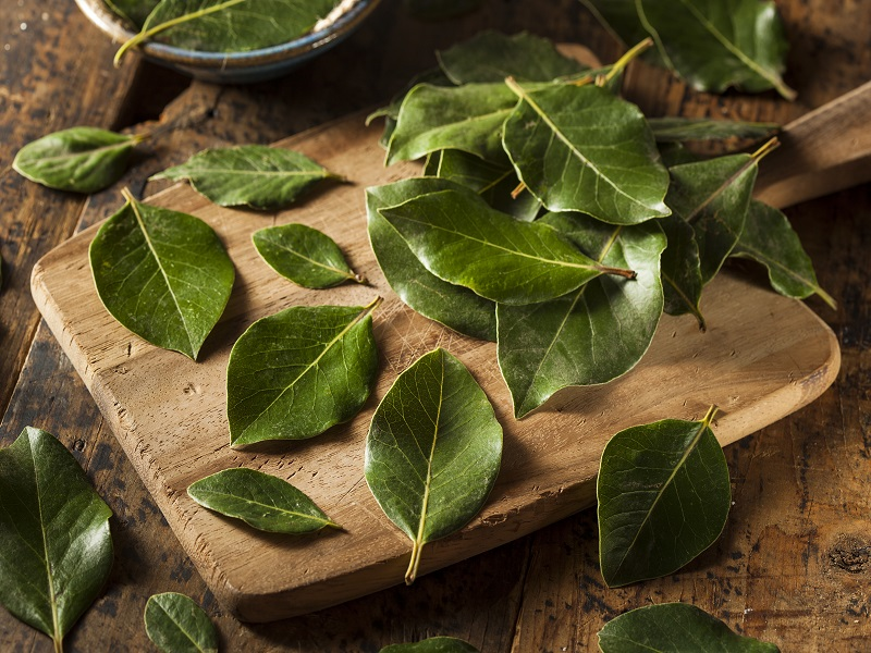 substitute for bay leaf in recipes